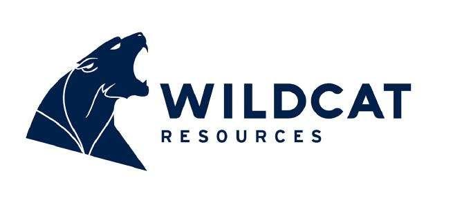 Grange Consulting Portfolio Wildcat Resources